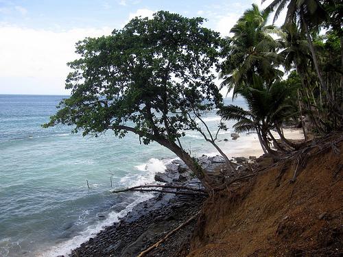 Andaman Islands 032