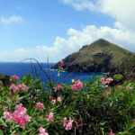 Northern Caribbean Island Hopping Itinerary